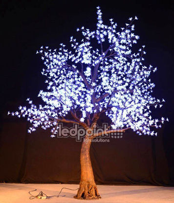 Bild von Kirschbaum 2,8 m hoch kalt-weiß 24V mit versteckten Drähten