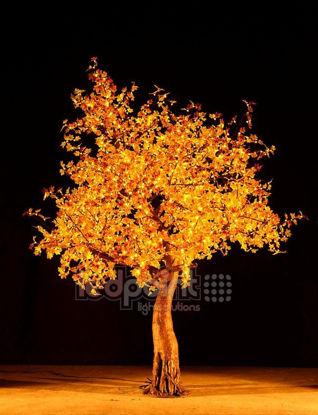 Bild von Ahorn 2,8 m hoch gelbe Blätter 24V mit versteckten Drähten