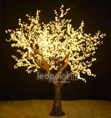 Picture of Cherry tree 3 m high warm white 24V