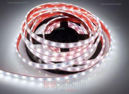 Immagine di Striscia led 5m bianco 4000K 3step 2835 60led/m Honglitronic 24V 14,4W/m, IP64 tubo di silicone estruso bordi pieni interno vuoto