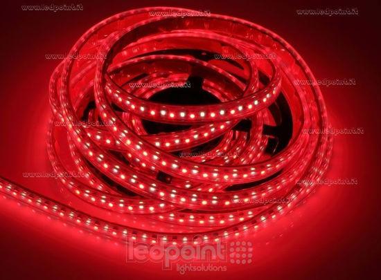 Immagine di Striscia led 5m RGB 3535 + bianco 4000K 3step 2835 140led/m 24V 28,8W/m, IP64 tubo di silicone estruso bordi pieni interno vuoto